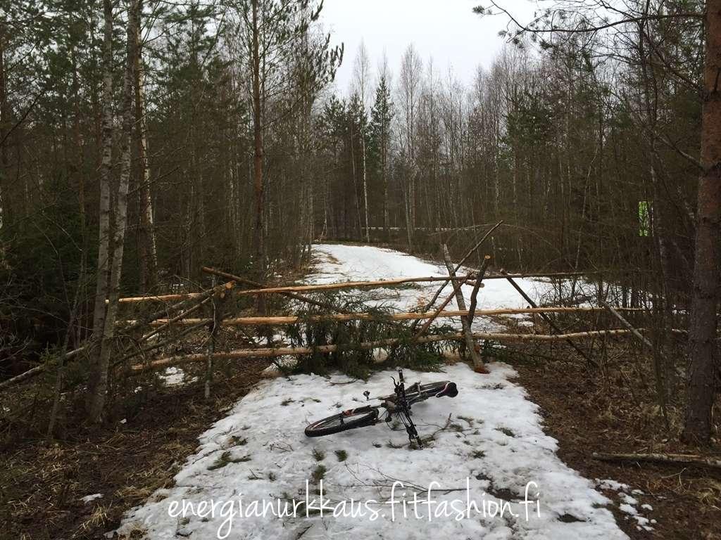 Jollakin on menny hermot ja blokannu Kyrkösjärven luontoreitin.